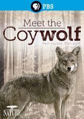 meet the coy wolf netflix