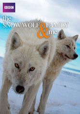 The Snow Wolf Family & Me